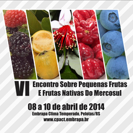 VI Encontro Sobre Pequenas Frutas e Frutas Nativas do Mercosul.